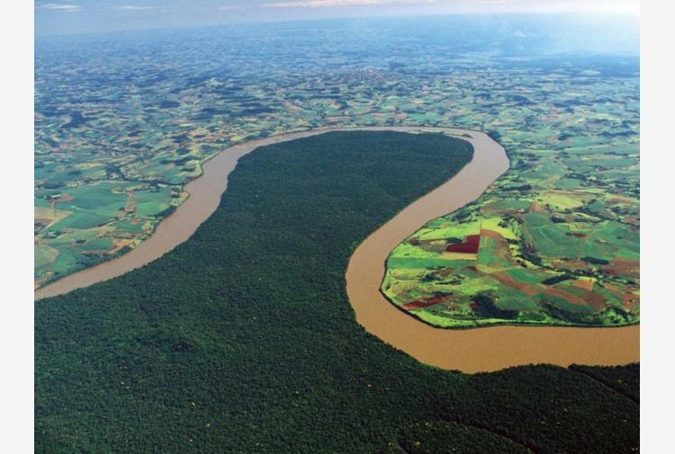 Il giorno dell'Amazzonia, 10 cose da sapere