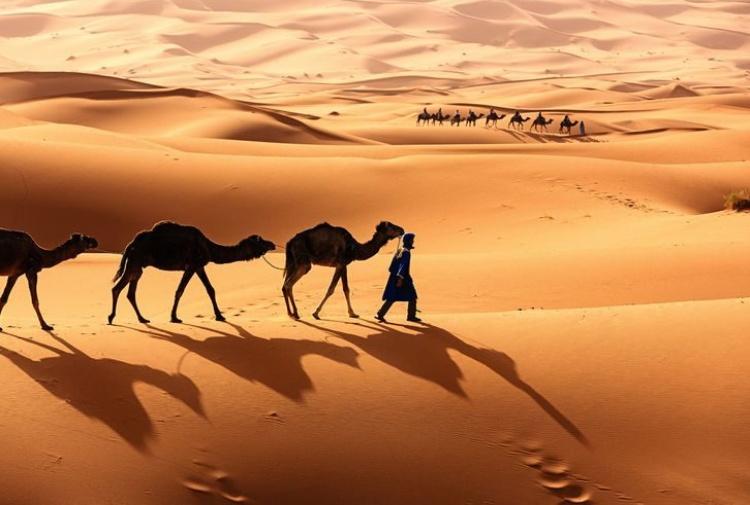 Il Sahara non è sempre stato un deserto. In passato si praticava la pesca nei laghi e nei fiumi collegati con il Nilo